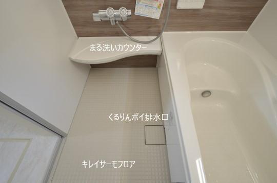_DSC0265_00097.jpgコピー