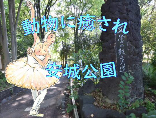 安城公園コラム