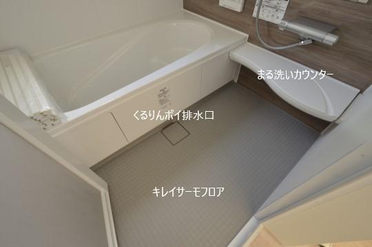 _DSC0307_00071.jpgコピー